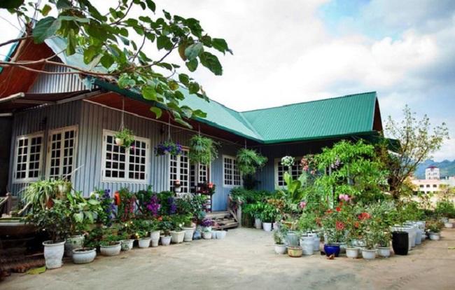 Mẫu thiết kế nhà gỗ sân vườn