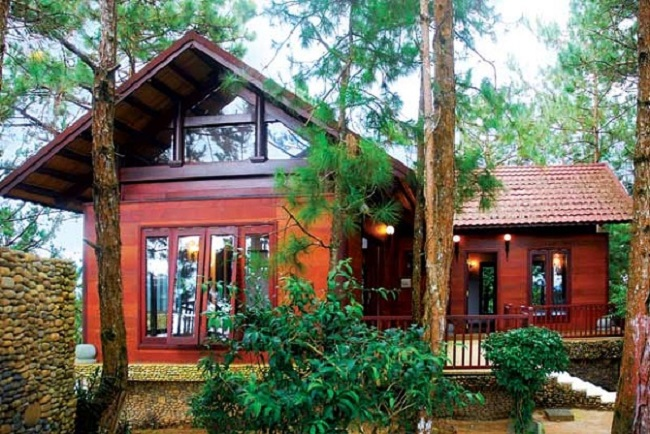 Nhà gỗ Đà Lạt giữa rừng thông